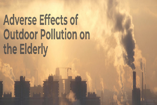 Adverse Effects of Outdoor Pollution on the Elderly [Infographic]