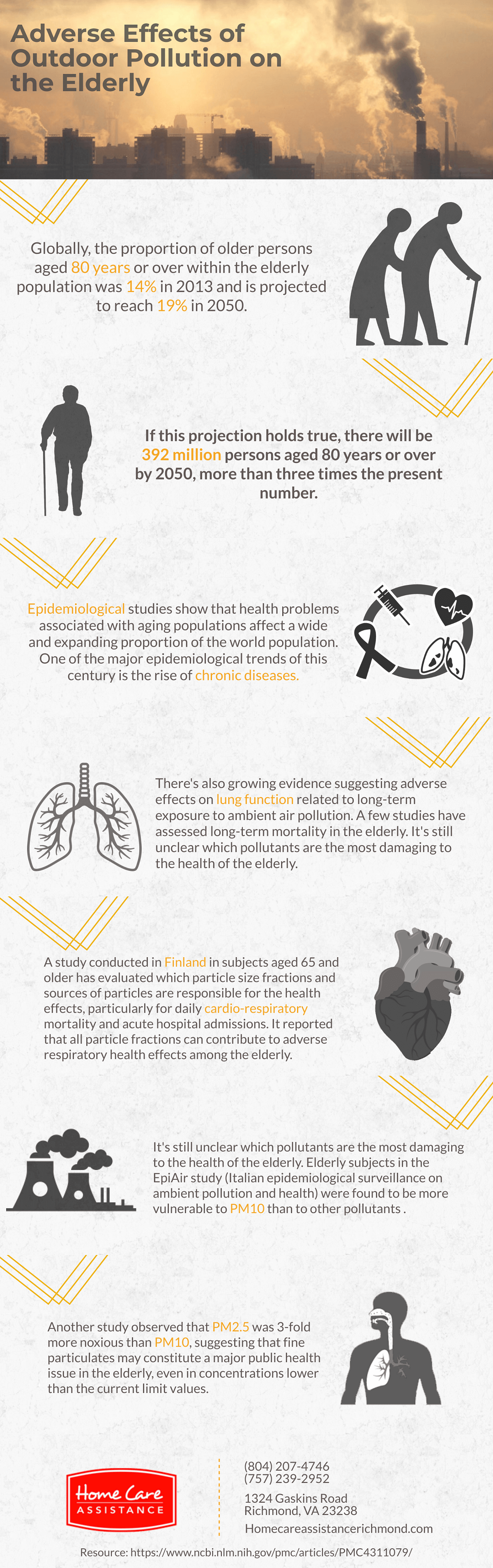 What Are the Adverse Effects of Pollution on Seniors? [Infographic]